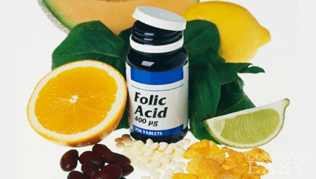 Folic Acid and Fertility