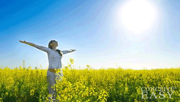 How Vitamin D is Connected to IVF Success
