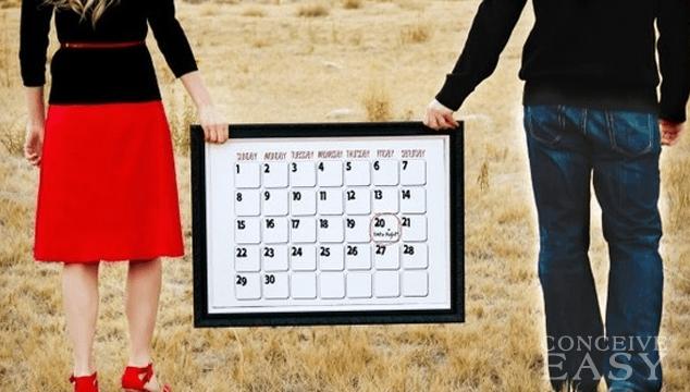 Ovulation Calendar