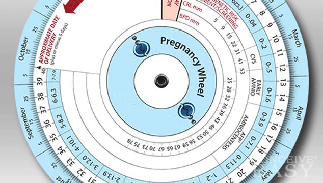 Date wheel online