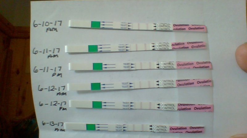 OPK test results