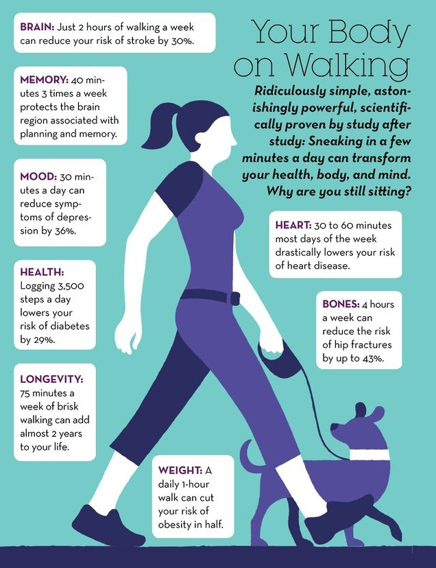 benefits of walking to fertility