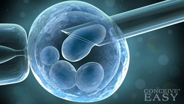 In Vitro Fertilization Financial Assistance