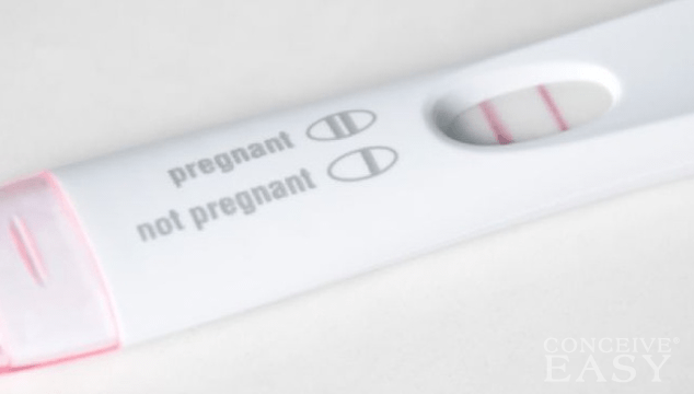 Ovulation Problems and Infertility