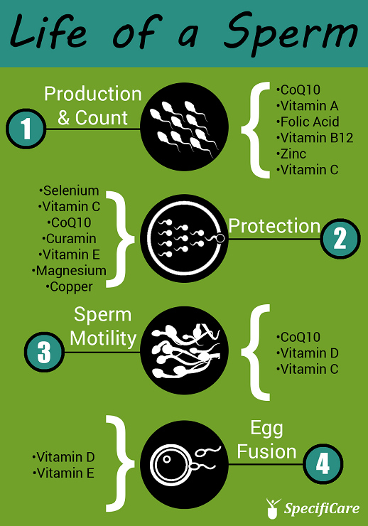 Folic acid and its benefits to male fertility