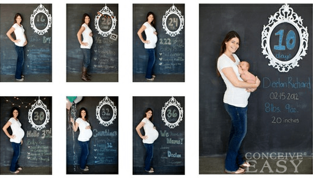 Different Stages of Pregnancy