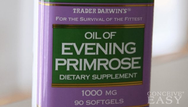 Evening Primrose Oil and Fertility