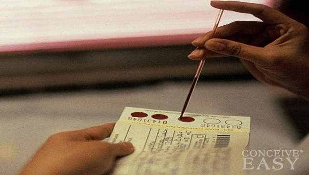 How is a Pregnancy Blood Test Performed?