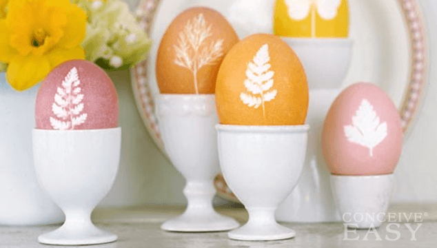 Infertility Causes: Poor Egg Quality