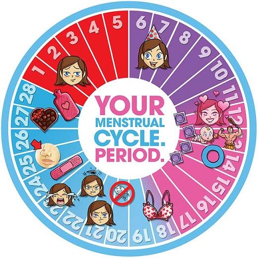 woman's guide to menstrual cycle and ovulation