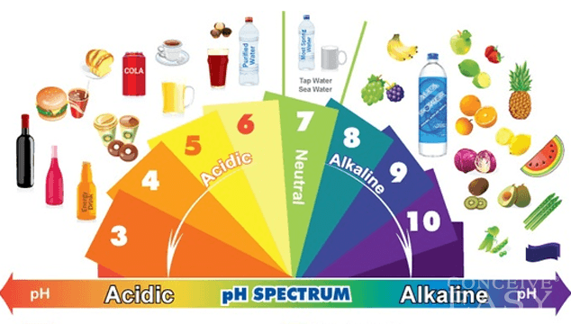 Alkalinity: How Your Body's pH Levels Can Affect Fertility