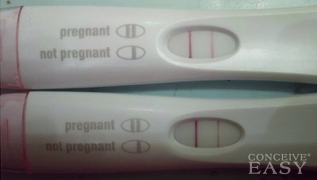 How many DPO can I get Pregnant?