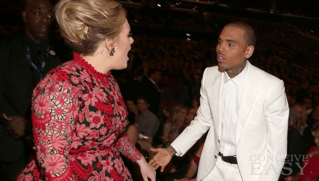 Adele Denies Snapping at Chris Brown for Being Mean to Frank Ocean