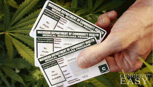 Octomom Nadya Suleman Now Owns Medical Marijuana Card