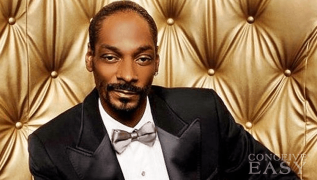 Snoop Lion Served With $546,000 Tax Lien