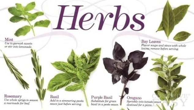 Categories of Herbs Safe in Pregnancy
