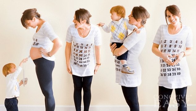 Eight Stages of Pregnancy