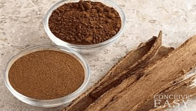 Can Cinnamon Restore Menstrual Cycles in PCOS?