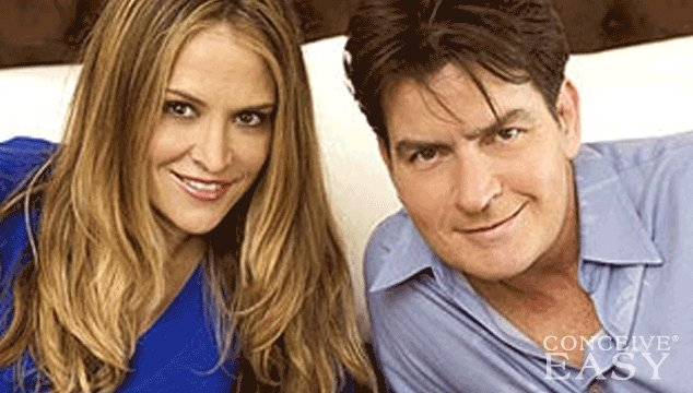 Why Did Charlie Sheen's Ex Brooke Mueller Opt for Test Tube Twins?