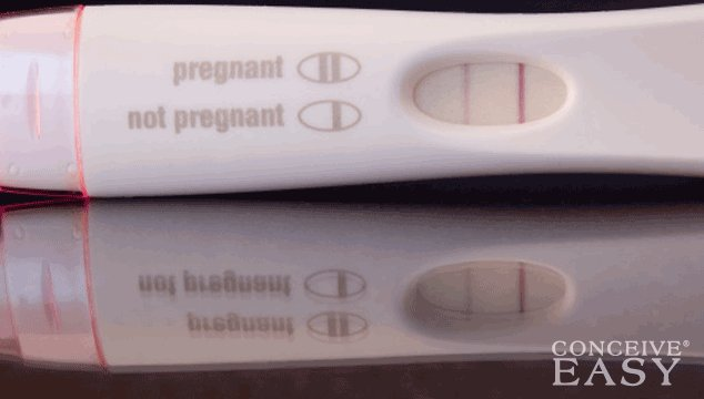 What Cycle Day We Can Do a First Response Pregnancy Test at Home?