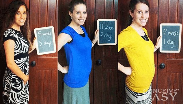 Jill Duggar Debuts Baby Bump on Instagram