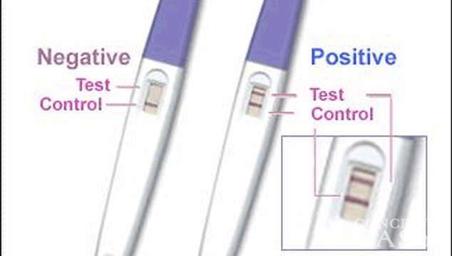 Pregnancy Test Directions