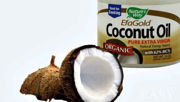 Can Coconut Oil Help me Get Pregnant?