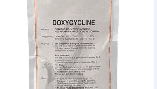 Can Doxycycline Help me Get Pregnant?
