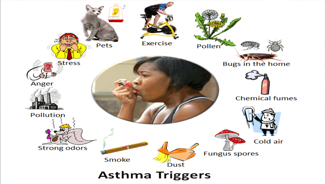 How to Reduce Asthma Attacks