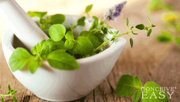 How to Get Pregnant with Natural Herbs
