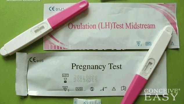 Can an Ovulation Kit be used as Pregnancy Test?