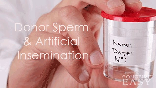 Donor Sperm Artificial Insemination