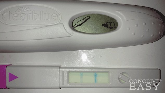 My Ovulation Kit Shows Two Faint Lines