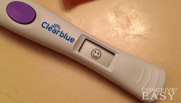 What are Ovulation Test Results if You are Pregnant?