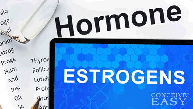Can I get Pregnant with Low Estrogen?