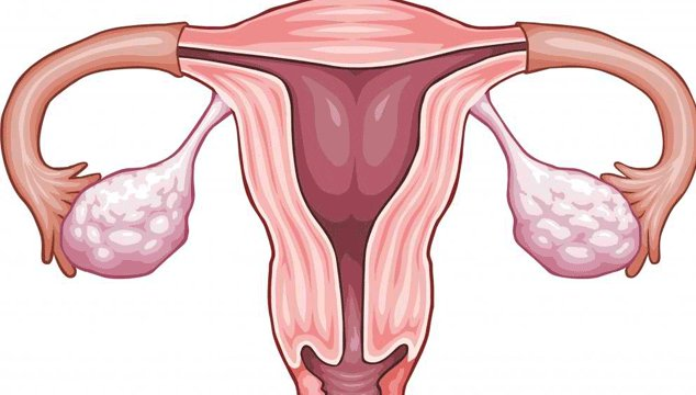Can I get Pregnant with My Tubes Cut, Tied and Burned?