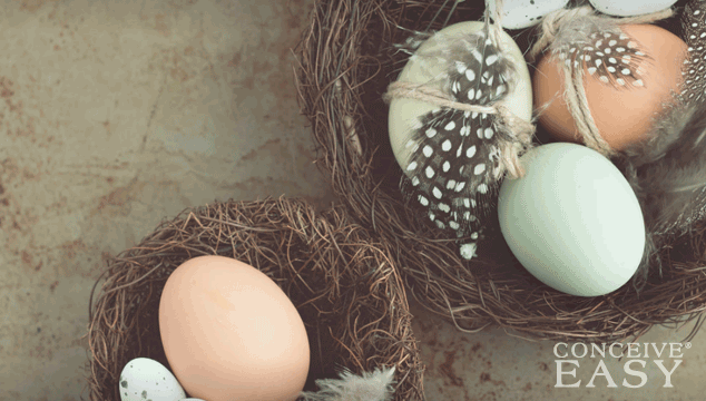 australians-importing-donor-eggs-from-united-states
