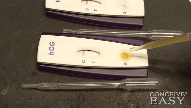 urine-based-ovulation-test-kits
