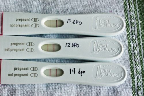 ovulation predictor kits to help track the LH