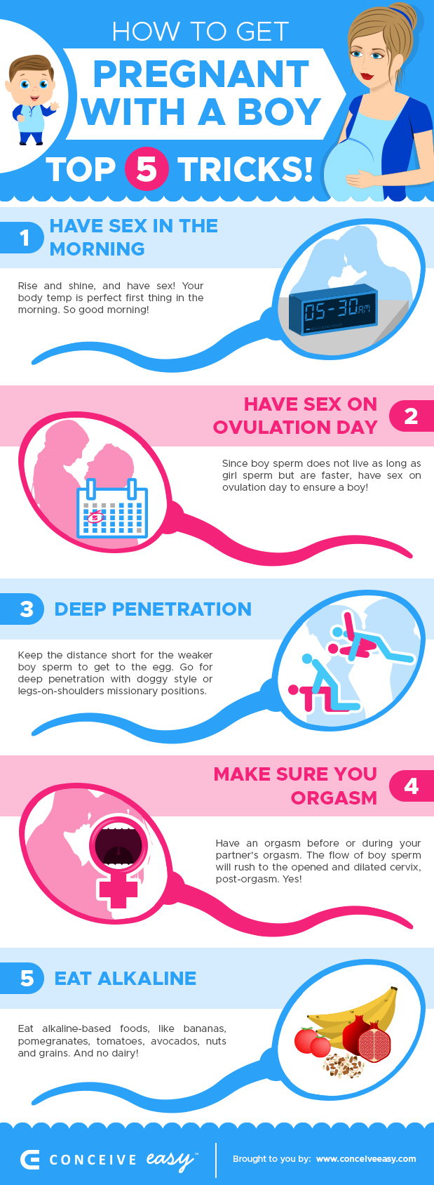 5 tricks on how to get pregnant with a boy infographic