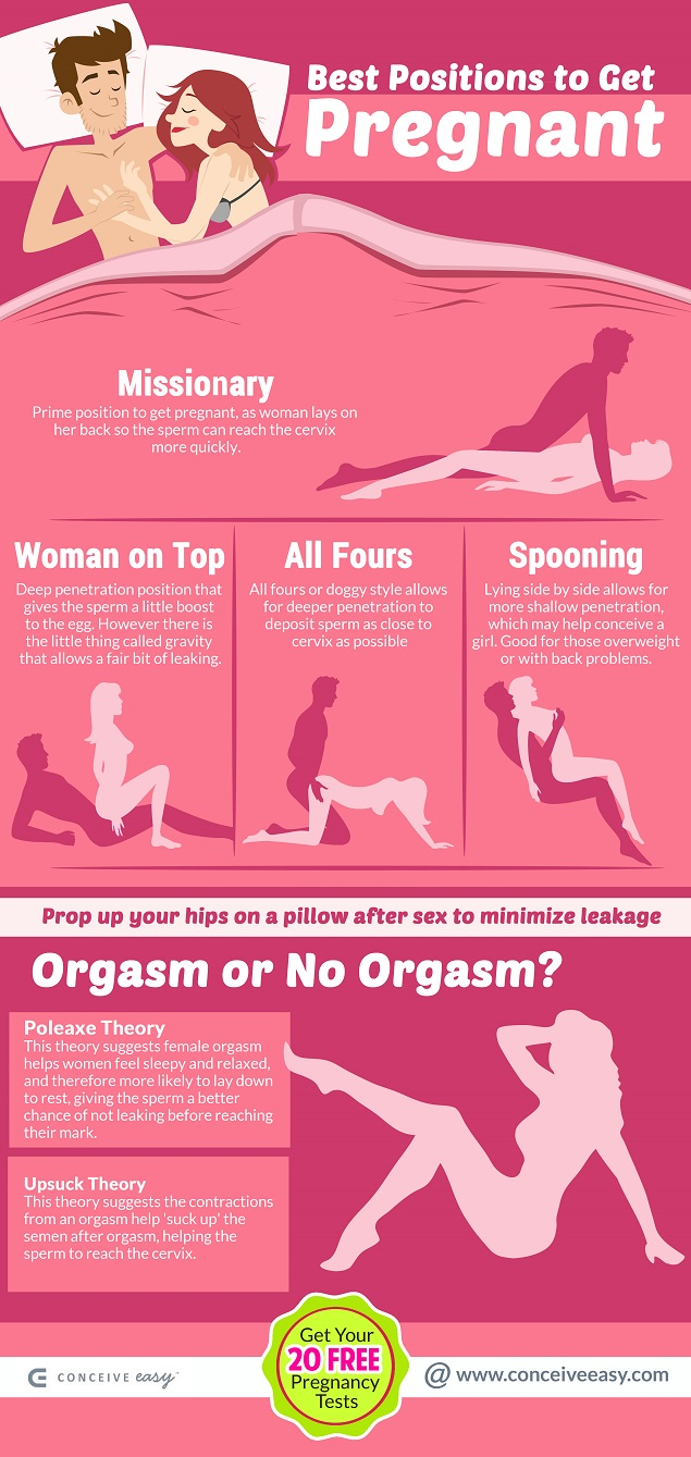 Best Positions to Get Pregnant Infographic