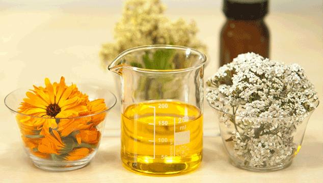 yarrow herb for fertility