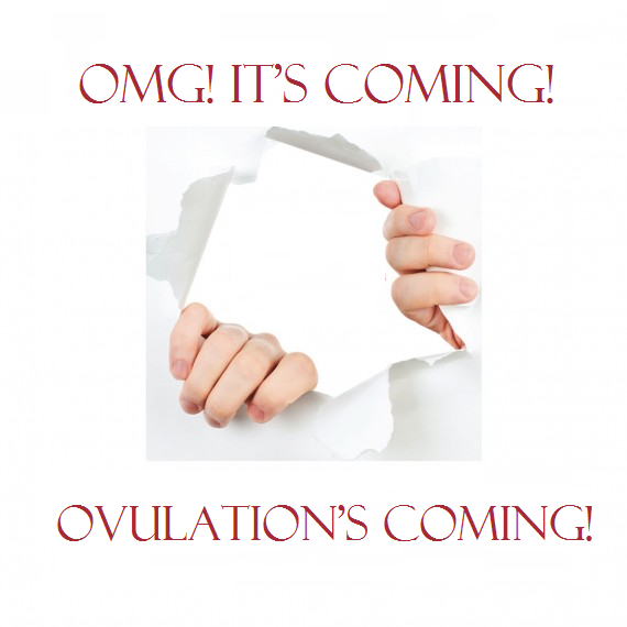 importance of pinpointing ovulation