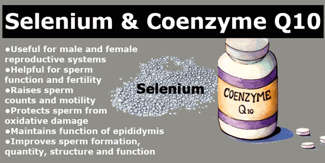 fertility benefits of selenium and Co10