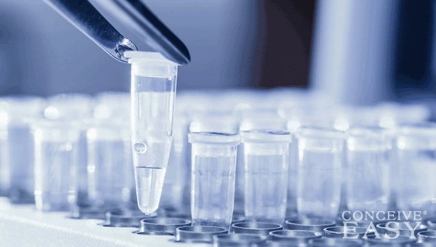 Secrets to Fertility Treatments: Discover All Your Options