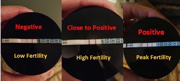 how to determine a positive opk result