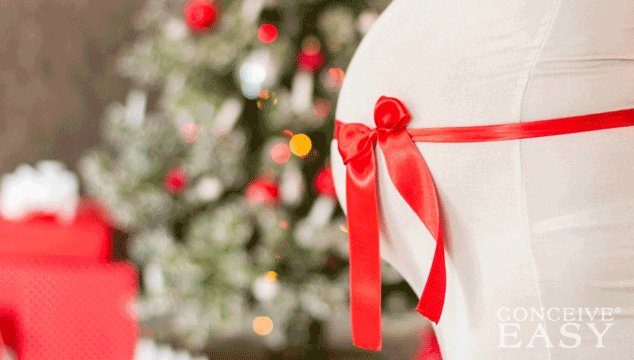 'Tis the Season to Conceive: Secrets of Conceiving in December