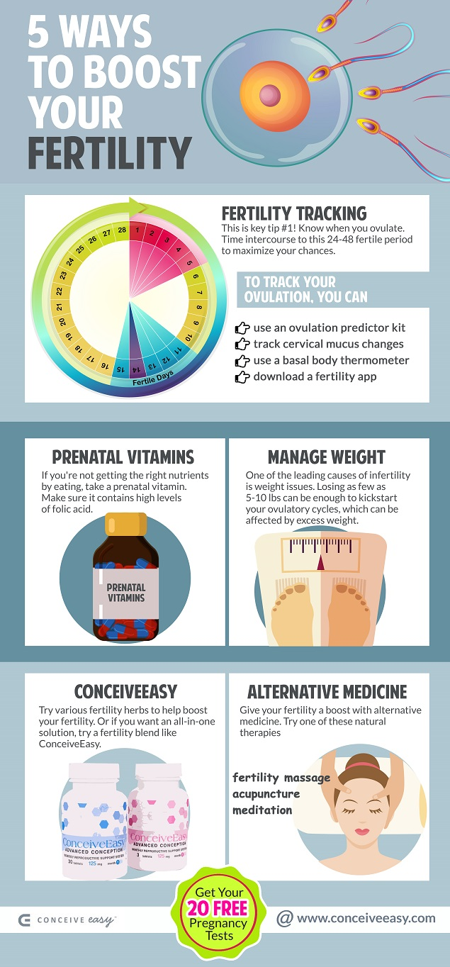 5 Ways to Boost Your Fertility Infographic