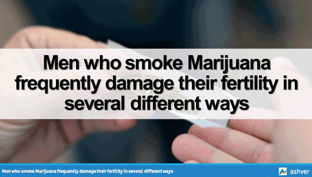Marijuana and male fertility