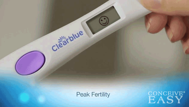 When Should I Have Sex After Positive Ovulation Test?